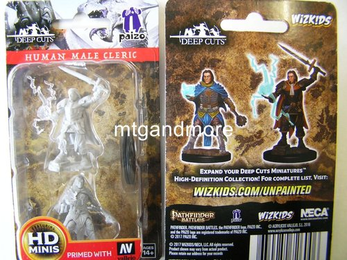 WZK72600 - Pathfinder Deep Cuts Wave 1 - Unpainted Miniatures Human Male Cleric