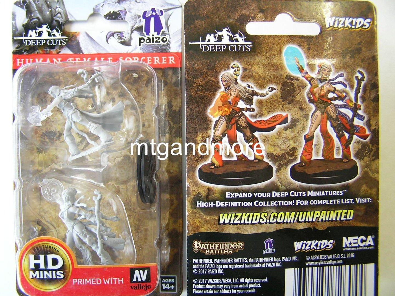 WZK72604 - Pathfinder Deep Cuts Wave 1 - Unpainted Miniatures Human Female  Sorcerer
