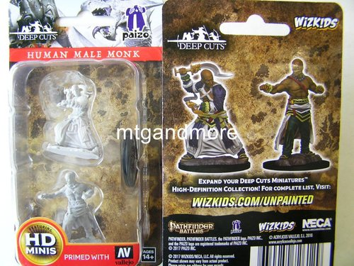WZK72612 - Pathfinder Deep Cuts Wave 1 - Unpainted Miniatures Human Male Monk
