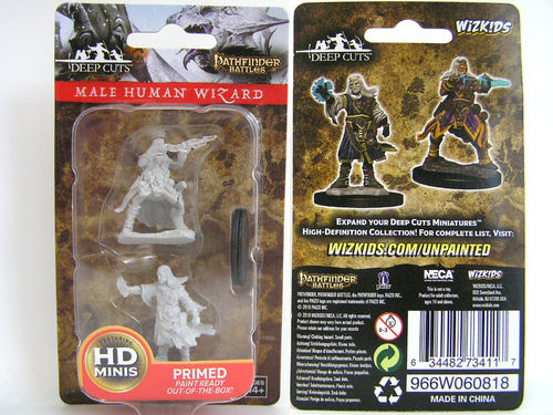 WZK73411 - Pathfinder Deep Cuts Wave 6 - Unpainted Miniatures - Male Human Wizard