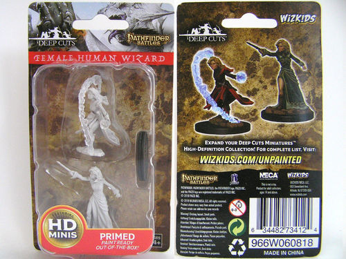 WZK73412 - Pathfinder Deep Cuts Wave 6 - Unpainted Miniatures - Female Human Wizard