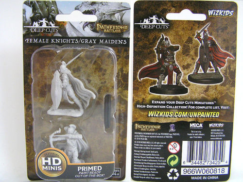 WZK73425 - Pathfinder Deep Cuts Wave 6 - Unpainted Miniatures - Female Knights / Gray Maidens